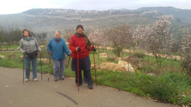 קידום בריאות הליכה נורדית